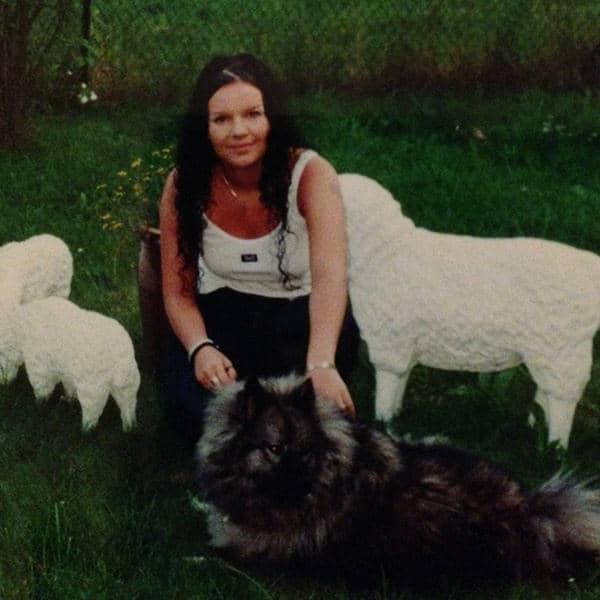 Zwischen Hund und Schaf