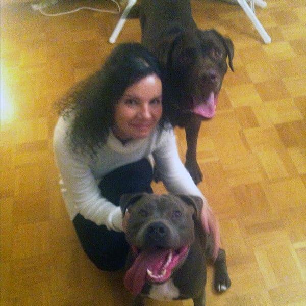 Mit meinen Hunden zuhause