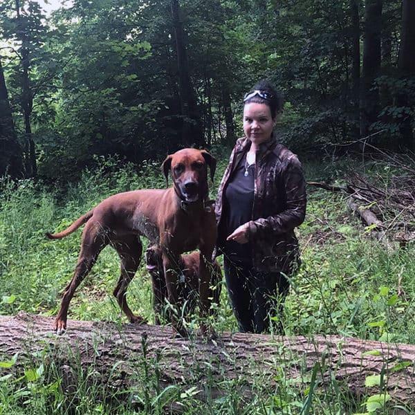 Waldspaziergang mit Hund